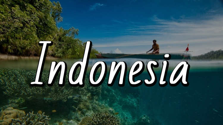 The Ultimate Travel Guide to Indonesia by Travel Done Simple