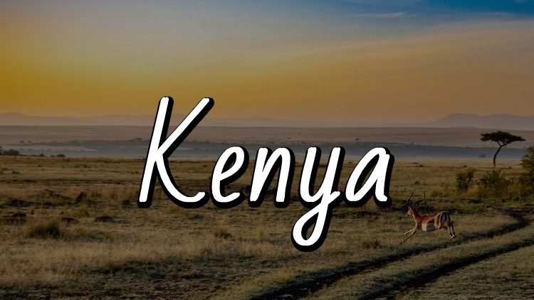 The Ultimate Travel Guide to Kenya by Travel Done Simple